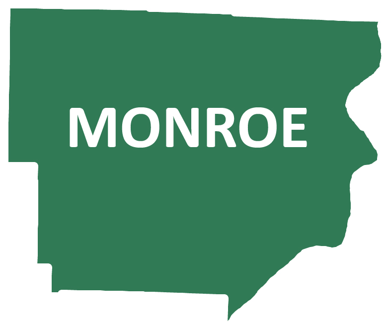 Outline image of Monroe County